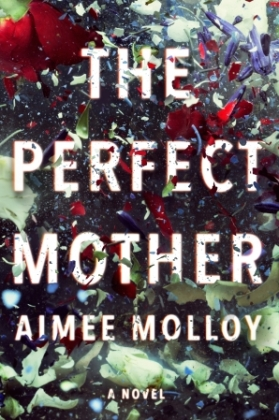 The Perfect Mother Book Cover