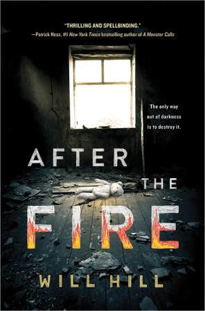 After the Fire Book Cover